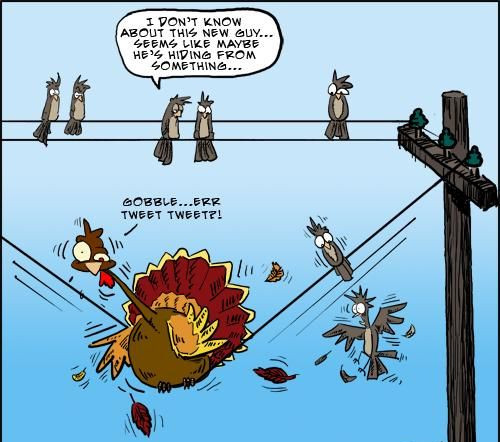 Funny Thanksgiving Jokes And Sayings Collections ...